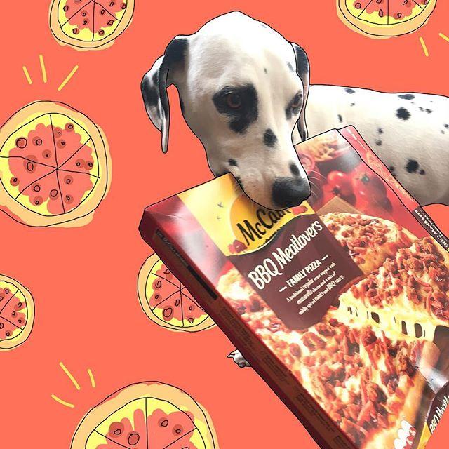 Pepper's favourite pizza 🍕 #mccain #mccainpizza #notsponsored #butpleasesponsorher