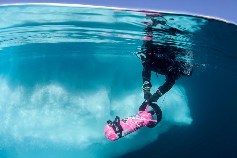 Susan_snorkeling_packice.jpg.jpeg