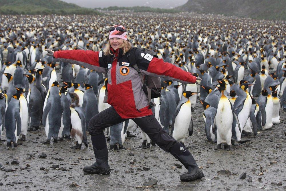 smaller_penguins.jpg