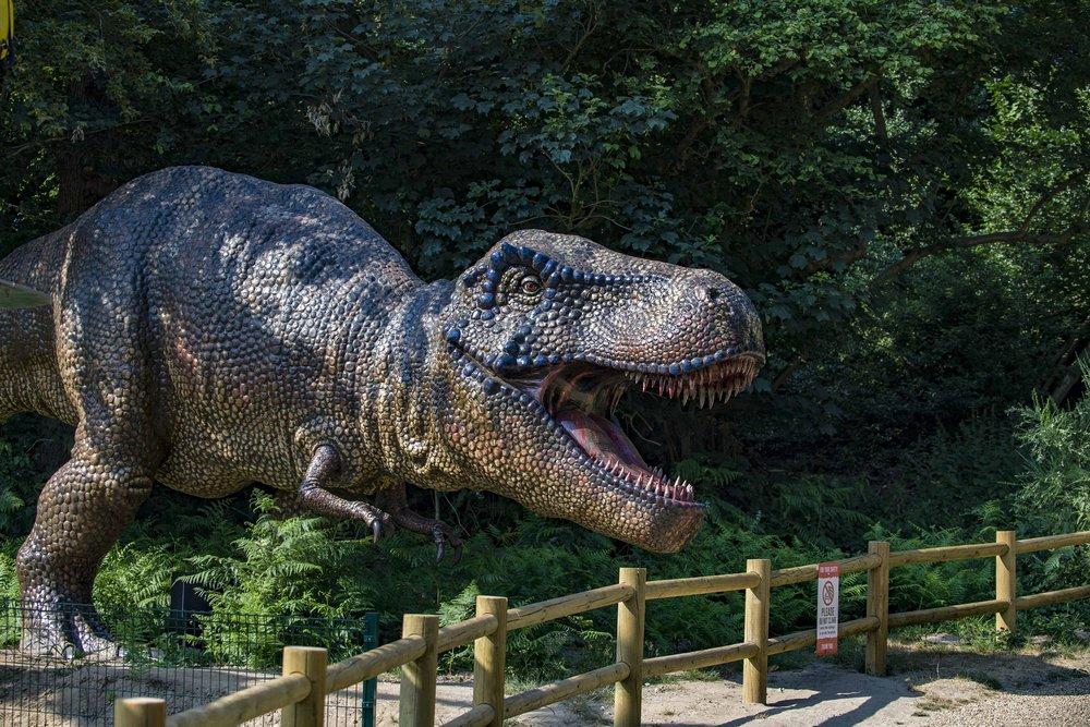 Roarr! Dinosaur Adventure Park.jpg