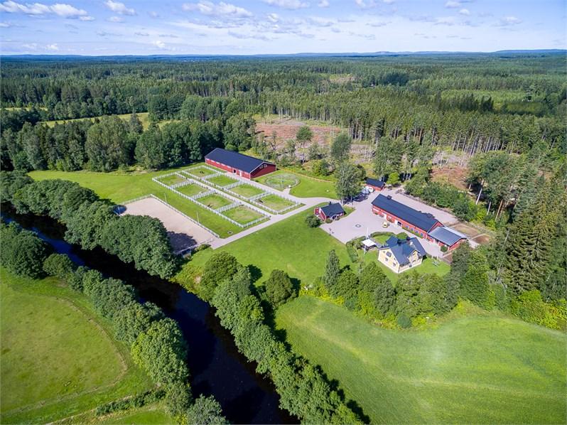 Här på vår gård i Högbo utanför Sandviken har vi vår verksamhet. I en lugn och harmonisk miljö där hästarna trivs, tränar och utvecklar vi våra hästar och vår ridning.