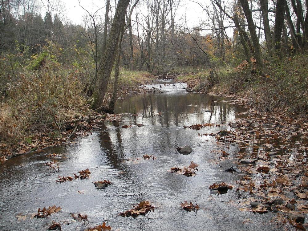 Cedar Grove Brook