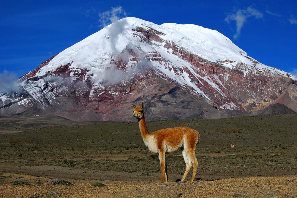 Chimborazo-ecuador