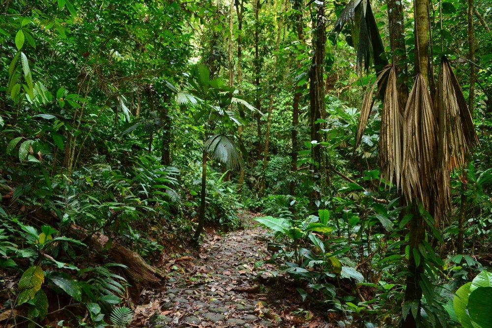 lost-city-trek-colombia
