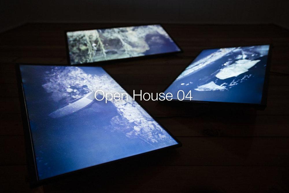 OpenHouse04.jpg