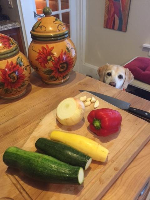 zucchini and summer squash with pasta veggies and daisy watching.JPG