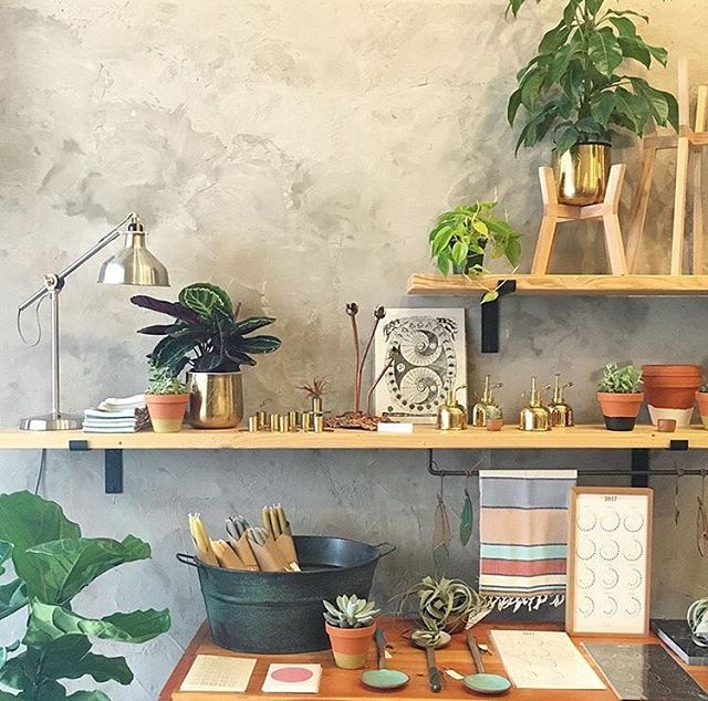 Can you even handle how beautiful Forage+Sundry's new shop is? ✨✨✨ photo: @forage.sundry