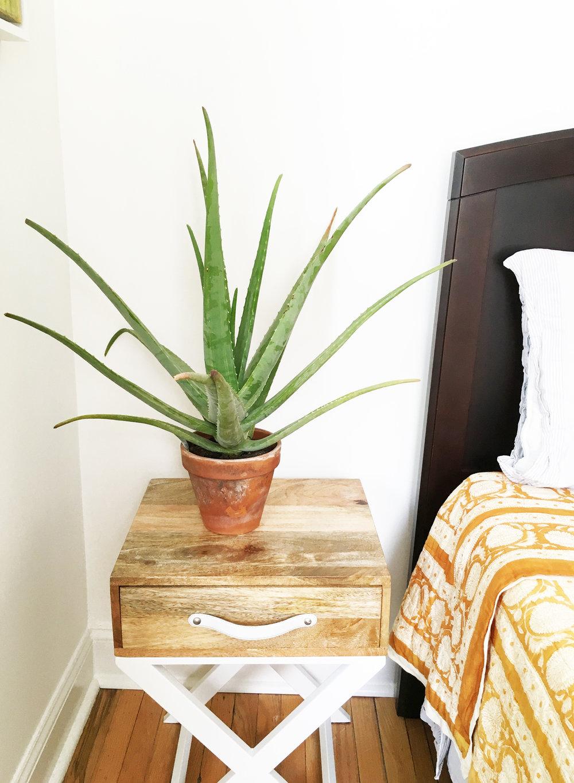 Asbury Park Residence | Spare Bedroom