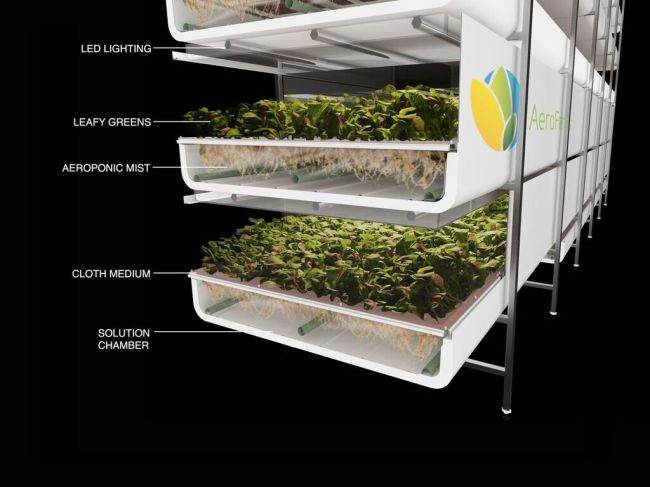 An illustrated image of AeroFarms' vertical farming (AeroFarms)