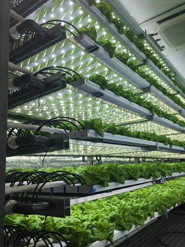 3063275-slide-7-take-a-3d-tour-of-a-vertical-farm-packed-inside-a-shipping.jpg