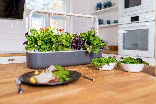 SG_kitchen_grey2.jpg