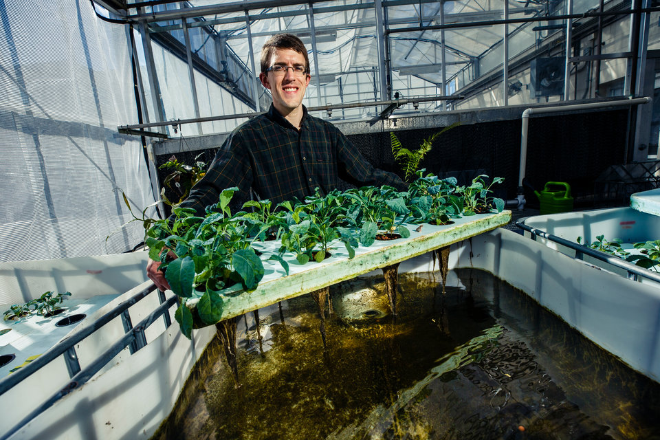 In addition to his work studying recycled nutrients in the soil of the community garden, professor Chip Small studies the same phenomenon in hydroponics, where the waste from fish is used to feed aquatic plants. (Photo by Mike Ekern '02)