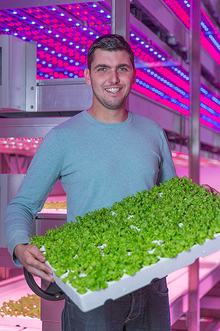 First Large Scale Commercial Vertical Farm in Europe To Be Set Up in The Netherlands  Farm to serve one of Europe's biggest supermarket chains with fresh-cut lettuce grown using LED horticultural lighting