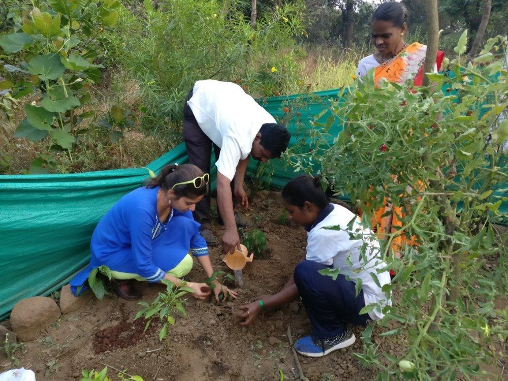 Promoting organic farming among urban dwellers
