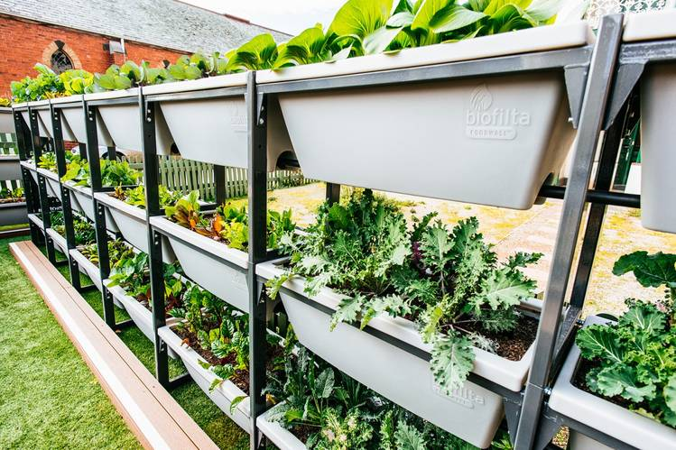 Biofilta's Foodwall system of connected containers requires minimal watering. Photo: Ben Mulligan