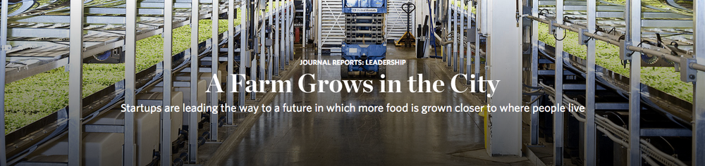 At AeroFarms' indoor vertical farm in Newark, N.J., greens grow on shelves 36 feet high Bryan Anselm for The Wall Street Journal