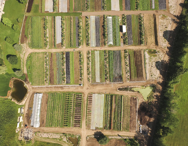 An aerial photograph of La Ferme des Quatre-Temps—an agricultural project in Hemmingford, Quebec that aims to demonstrate what the farm of the future could look like. (Photo:La Ferme des Quatre-Temps)