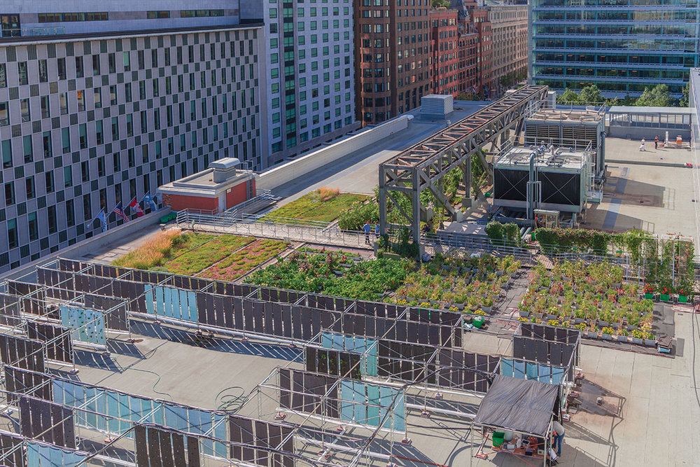 The Urban Agriculture Lab of the Palais des congrès de Montréal (CNW Group/Palais des congrès de Montréal)
