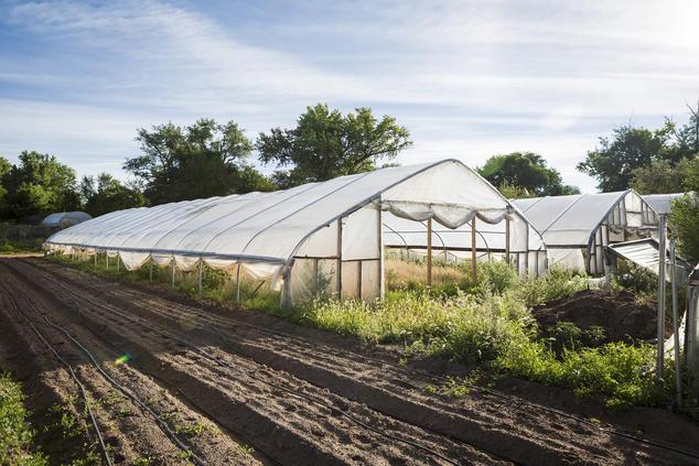 Santa Cruz Farm and Greenhouses, New Mexico  Gabriella Marks