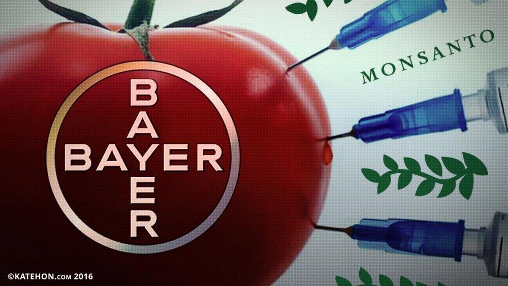 bayer_0_0.jpg