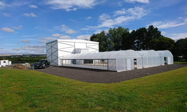 Food will be grown in a stacking system in a new building at Invergowrie
