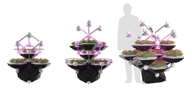 livingfarmingtree.jpg.662x0_q70_crop-scale.jpg