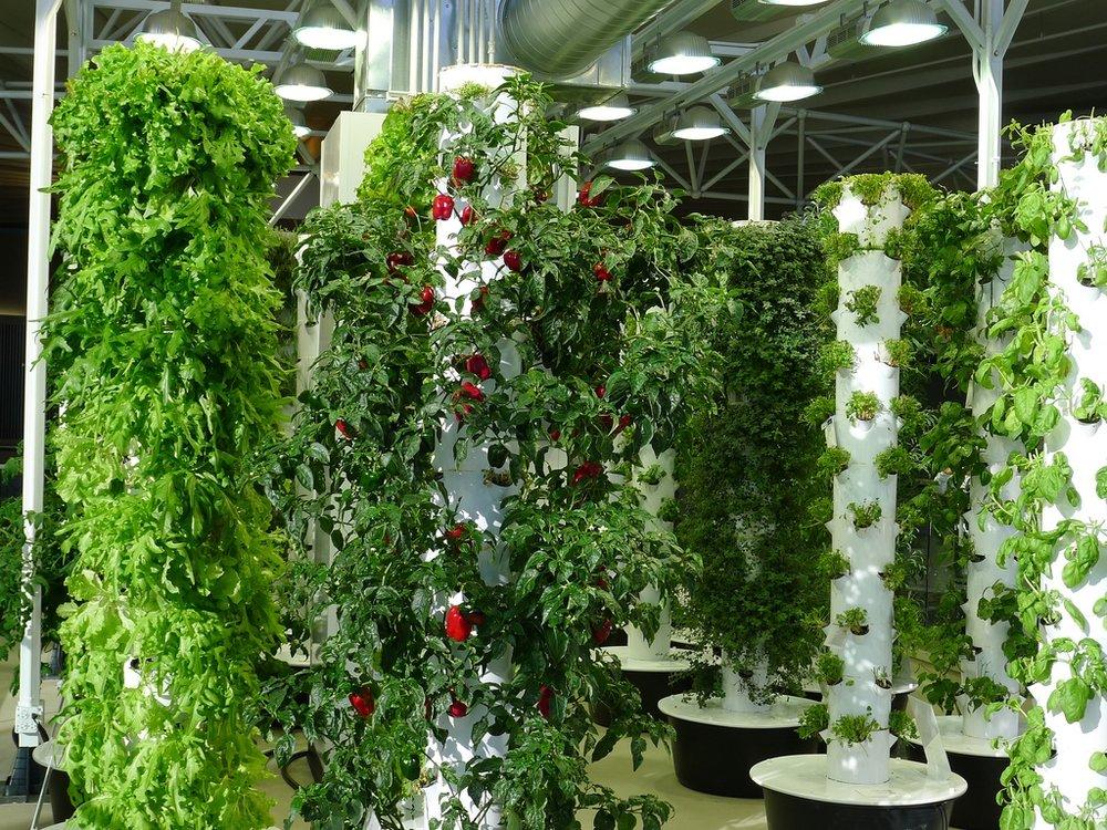 Indoor Vertical Farming.chipmunk_1/Flickr