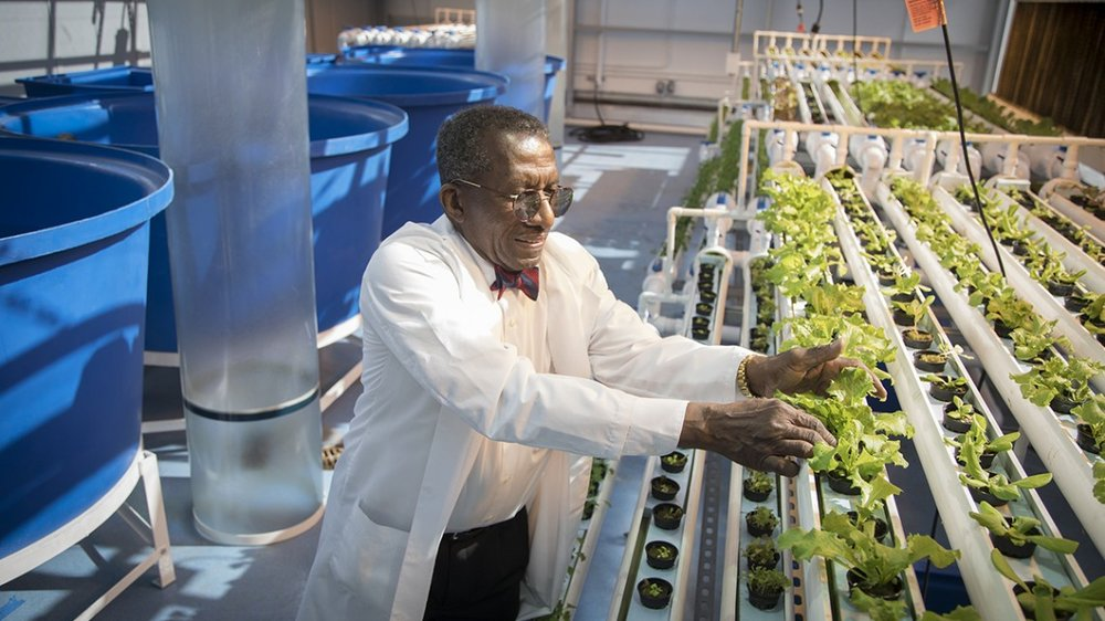 Philson Warner leads a tour through the hydroponics greenhouse and aquaculture facility at the Food and Finance High School in New York City.