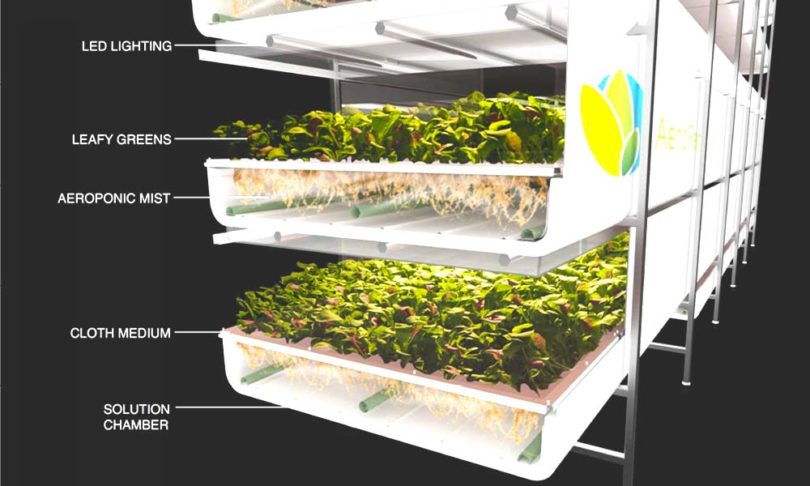 EWP_A-Beginners-Guide-to-Vertical-Farming-1-from-AeroFarms-810x486.jpg