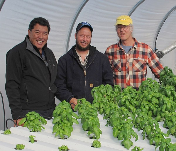 (L-R) Fred Lau of Mari's Garden and Fred Humphrey of Island Growers with Michael Christian at the AmHydro research greenhouse in Arcata, Calif.  Photo courtesy of AmHydro
