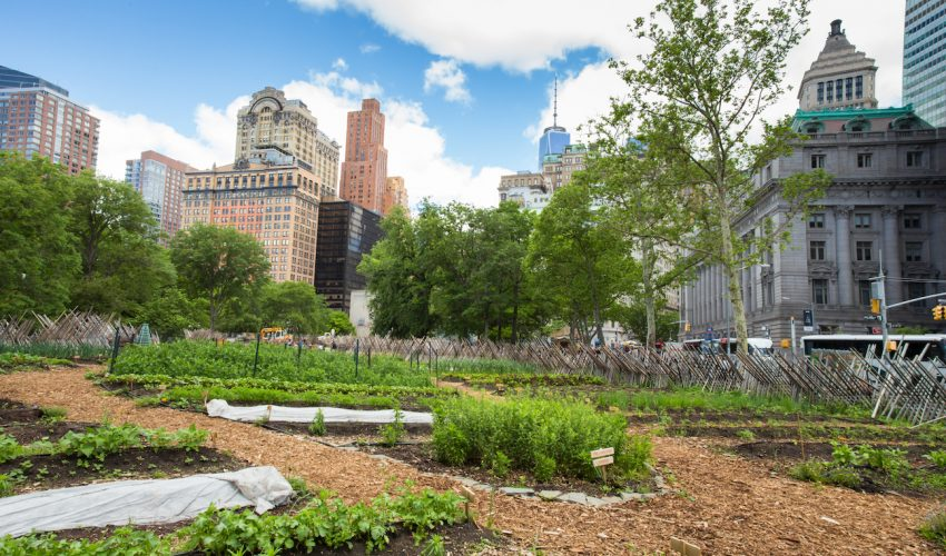 The-benefits-of-urban-agriculture-may-be-greater-than-we-thought-850x500.jpg