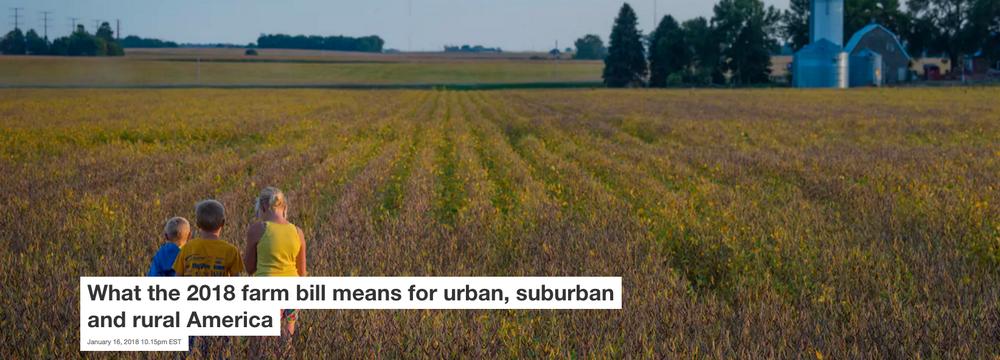 Soybean crop on a family farm near Humboldt, Iowa, 2017. USDA/Preston Keres