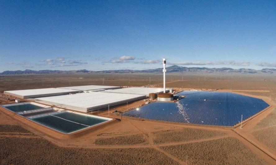 sundrop-farms-australia-889x532.jpg