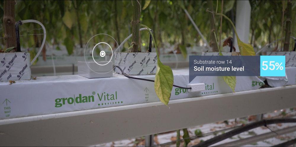 soil moist sensor.jpg