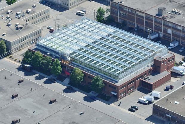 The rooftop greenhouse in Montreal's Ahuntsic neighborhood (Lufa Farms)