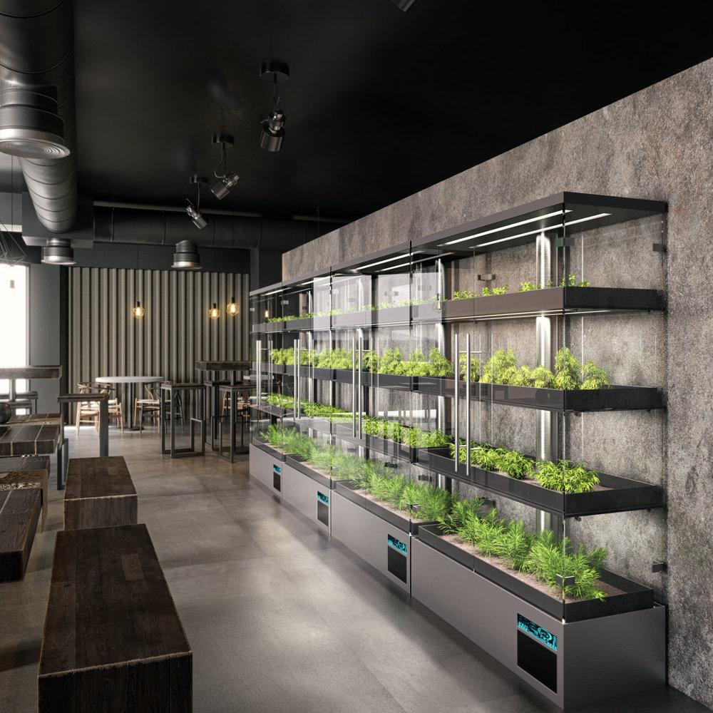 Babylon-Micro Farms