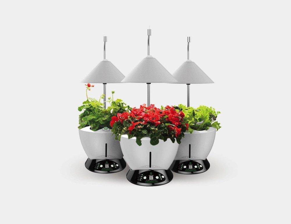 iGrow LED Indoor Hydroponic Herb Growing Kit