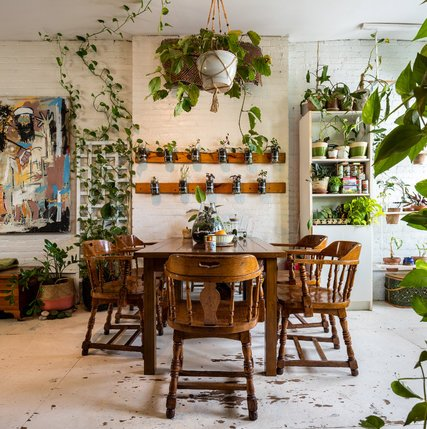 Summer Rayne Oakes has created a vertical garden in her dining room that is made out of Mason jars mounted to the wall with wooden boards and hose clamps.CreditBrad Dickson for The New York Times