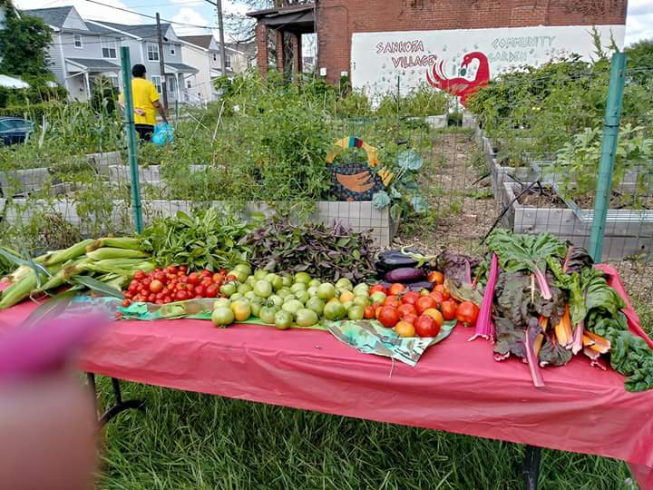 Produce from the Sankofa Village Community Garden. Photo courtesy Ayanna Jones.