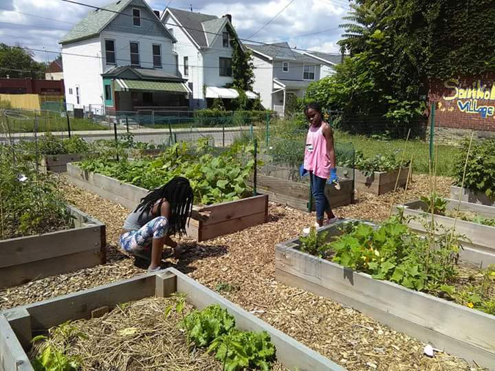 Sankofa Village Community Garden in North Point Breeze and Homewood South could benefit from the URA's urban agriculture pilot program. Photo courtesy Ayanna Jones.
