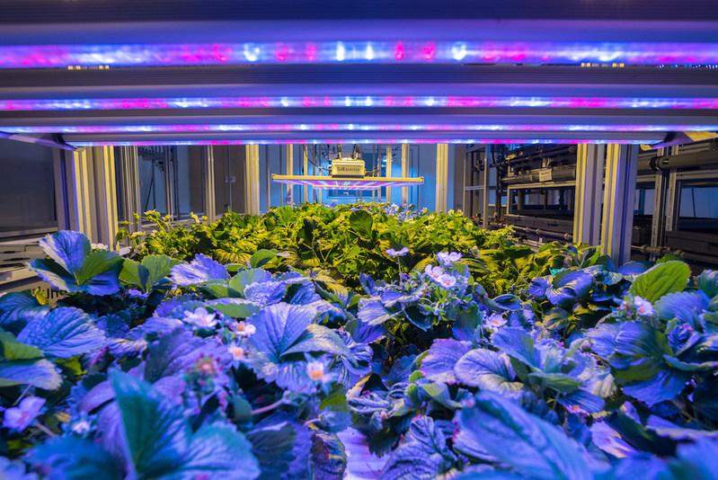AEssenseGrows Announces 2018 International Indoor Plant Factory Symposium in Shanghai