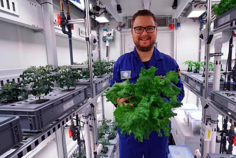 The undated photo provided by the German aerospace center (DLR) shows engineer Paul Zabel with fresh salad he harvested in the EDEN-ISS greenhouse at the Neumeyer-Station III on Antarctica. The project without soil but with a closed water cycle, optimized lightning and carbon dioxide levels is a test to become part of the nutrition for astronauts in the future moon or Mars missions. (DLR via AP) THE ASSOCIATED PRESS