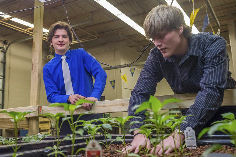 Noah Rushinsky, 18, and Colton Welker, 19 demonstrate their senior project on aquaponics at Caston High School. The project involves raising plants and fish in a closed system where the water is fertilized by the fish and the nutrient-rich water is used to grow the plants. Fran Ruchalski | Pharos-Tribune