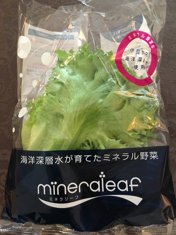 Photo: Harry Goldstein   Succulent Greens: Grown indoors under LEDs with seawater pumped up from 800 m deep, Mineraleaf lettuce is delicious and loaded with nutrients.