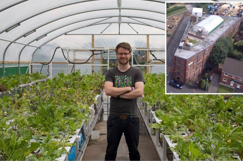 Dr Andrew Jenkins and inset, the garden on the rooftop of Irwell House, Salford