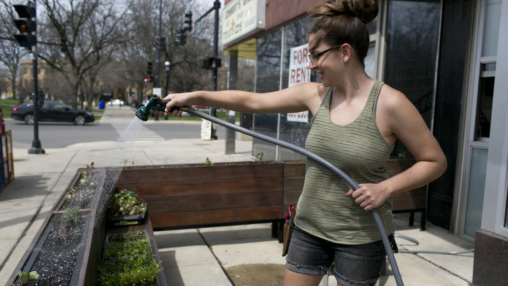 Jen Rosenthal, owner of Planted. Rosenthal lost her three-year-old plots when her time in an incubator program came to an end.  (Kristen Norman / Chicago Tribune)