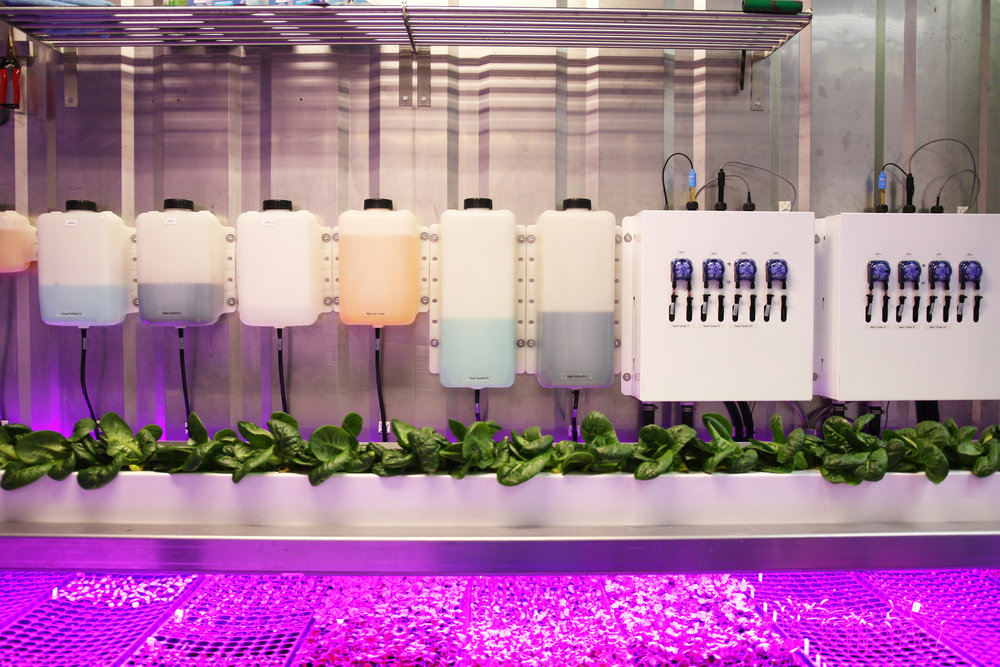 LGM Nutrient and Dosing Panels.jpg