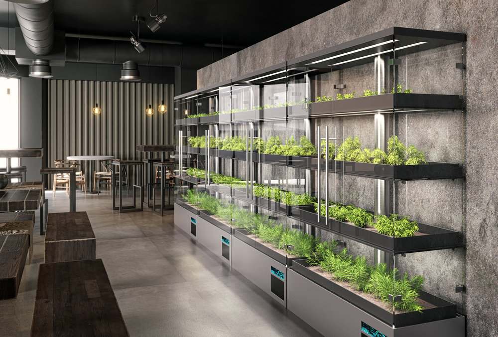 Micro-Farms-Restaurant.jpg