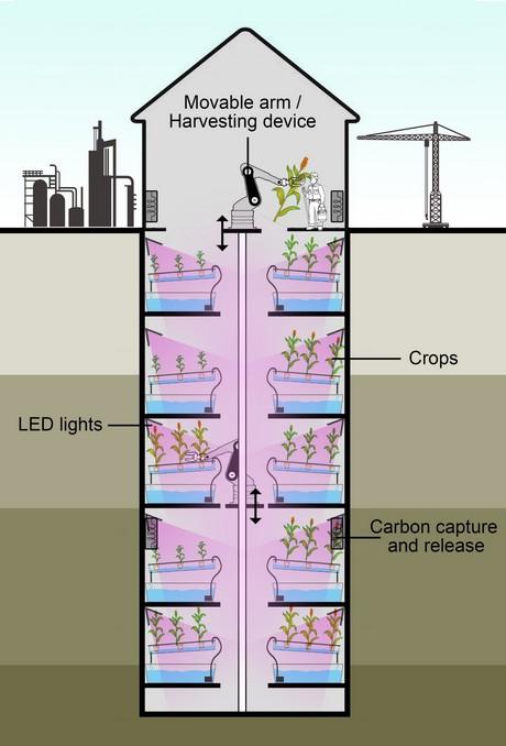 Automated Deep Farm concept