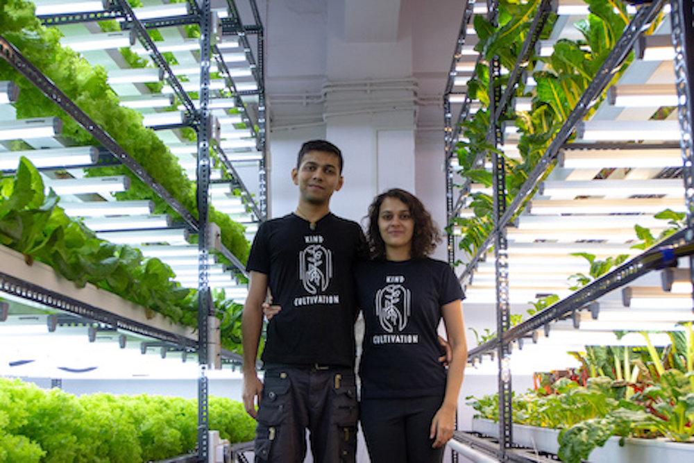The minds behind Herbivore Farms